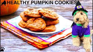 halloween healthy pumpkin dog cookies treats remix diy dog food by