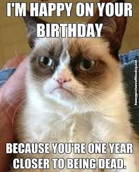 Birthday Meme Tumblr - grumpy cat funny birthday meme pictures photos and images for