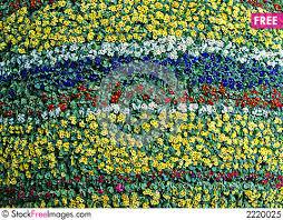 the vertical flower garden free stock images u0026 photos 2220025