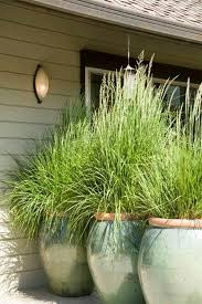 Backyard Landscaping Ideas For Privacy 12 Landscaping Ideas To Upgrade Your Backyard This Summer