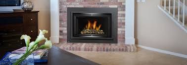 regency fireplace inserts home design and interior design ideas