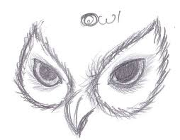 25 beautiful owl sketch ideas on pinterest owl drawings owl