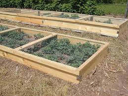 building planter boxes for strawberries countryside network