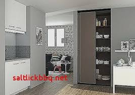 porte placard cuisine charniere meuble cuisine lapeyre pour idees de deco de cuisine