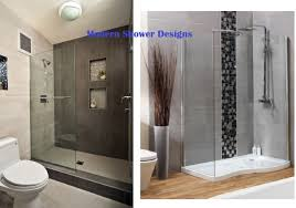 shower uncommon unbelievable walk in bathtub shower price