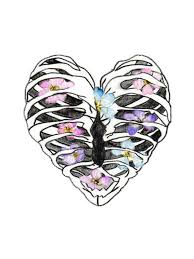 floral rib cage stickers by abigail redbubble