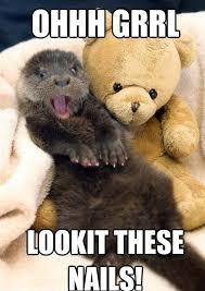 Otter Memes - my nails funny otter memes pics bajiroo com