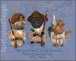 affenpinscher nc 2016 specialty affenpinscher club of america
