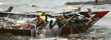 asylum seekers not lankan daily mirror sri lanka latest