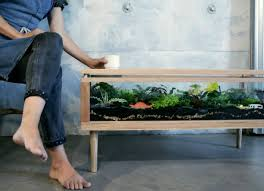 coffee table planter decorating with plants 10 inventive indoor