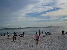 dolphin watching in madeira beach florida madeira beach florida
