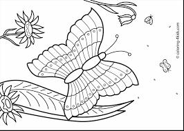 fall kindergarten nature worksheets preschool preschool coloring