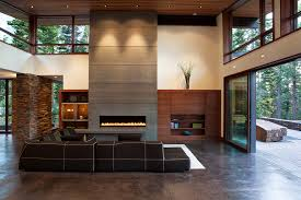 Contemporary Fireplace Doors by Modern Fireplace Doors Living Room Contemporary With Vaulted