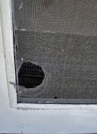 ck u0027s windows u0026 doors idaho falls windows