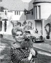 zsa zsa gabor palm springs house philip mershon s felix in hollywood from the schenectady gazette