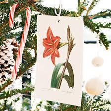 deko zu weihnachten mit günstigen materialien basteln