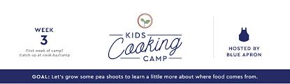 Print Logo On Apron Week 3 Grow It Yourself Blue Apron Blog