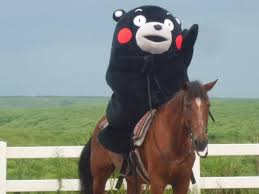 Kumamon Meme - it s kumamon a mascot character of kumamoto prefecture japan i