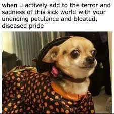 Sad Dog Meme - 23 crushingly depressing memes smosh