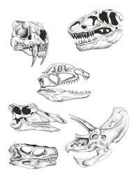 25 trending dinosaur drawing ideas on pinterest rare tattoos