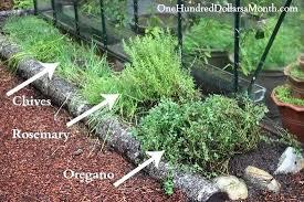 Herb Garden Layout Ideas Perennial Herb Garden Layout Ideas Garden Patch Mishawaka Indiana