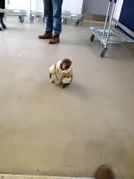 Ikea Monkey Meme - everything you need to know about the ikea monkey