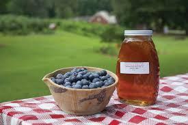 z use 2016 06 blueberries 320 1920x1281 jpg