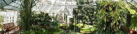 wollongong botanic gardens 5 good looking uw botanic gardens wedding