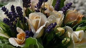 Lavender Bouquet Free Photo Roses Lavender Bouquet Thank You Free Image On