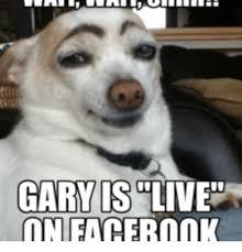 Gary Meme - gary is live on facebook live meme on me me