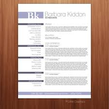 cv resume sample pdf resume template pdf form custom your resume by littlegraphics
