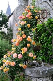 French Country On Pinterest Country French Toile And 847 Best French Country Treasures Images On Pinterest French
