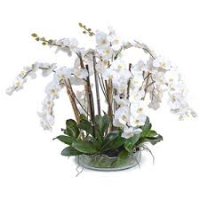 faux orchids new growth designs white phalaenopsis orchid faux arrangement