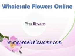 Wholesale Flowers Online Wholesale Flowers Online Ppt Download