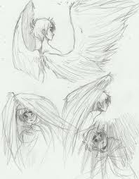 21 best birds images on pinterest draw drawing and drawing
