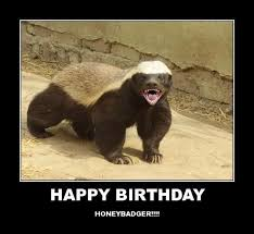 Honey Badger Meme - badger birthday meme birthday best of the funny meme