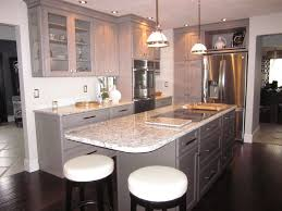 modern kitchens pictures modern kitchens kitchens by diane rockford il loves park il