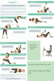 54 best back images on pinterest office chairs ergonomic