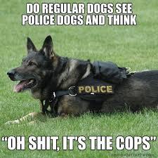 Frowning Dog Meme - elegant dog regular dogs see police dogs meme wallpaper site
