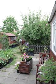 Patio Fruit Trees Uk by Graphicality Uk The Joys Of A New Garden 1