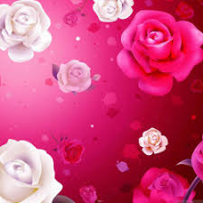 whatsapp wallpaper red valentines day lovely hd wallpapers for whatsapp and facebook