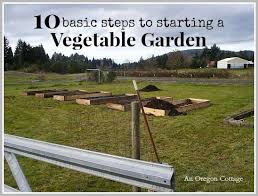 get started gardening 10 steps to start a vegetable garden