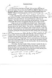 internship essay example how to write a autobiography essay