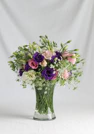 lisianthus flower how to start lisianthus from seed henry homeyer