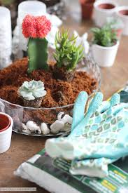 How To Make A Succulent Wall Garden by How To Create A Succulent Garden The Everygirl