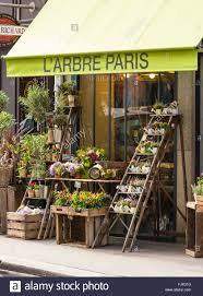 florist shop florist shop exterior plants and flowers for sale