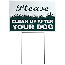 How to Keep Dogs Out of Your Yard  Or Anywhere Else  Lowe s My dog refuses to pee in the yard