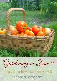 Us Zones For Gardening - gardening in zone 9 plus tips for other zones