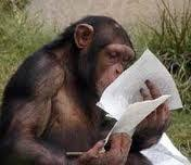 money for lunch assume the person reading your resume is a monkey resume clever word monkey nate mcconkie