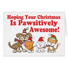 dog cat christmas cards invitations greeting u0026 photo cards zazzle